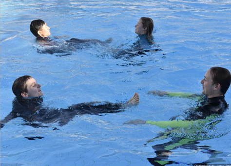 What to Expect from an Aquatic Rescue for Group 3 Pools